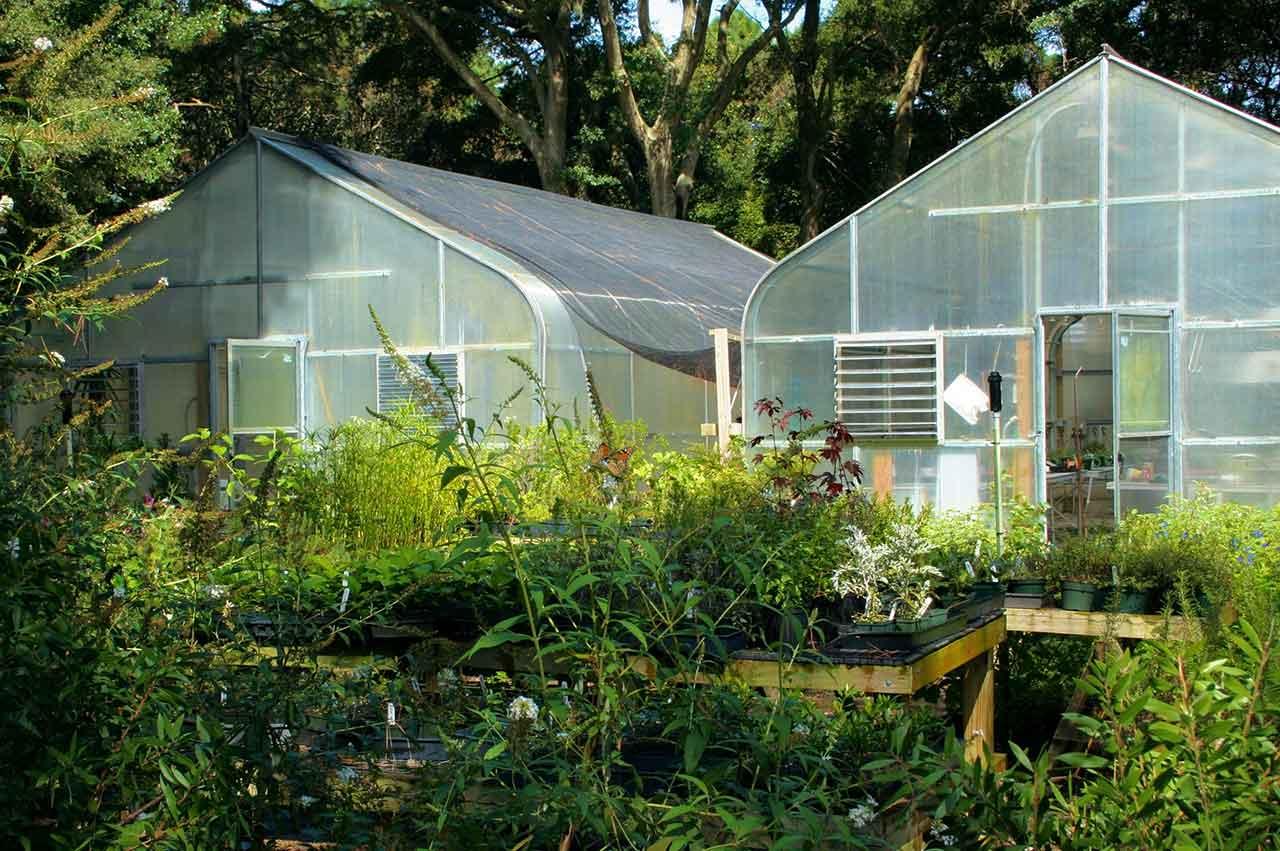 Greenhouse Gewächshaus Glasshouse Growbedarf
